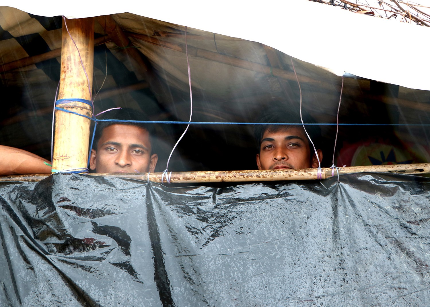 Refugees look through a gap in their shelter in Cox's Bazar, Bangladesh.