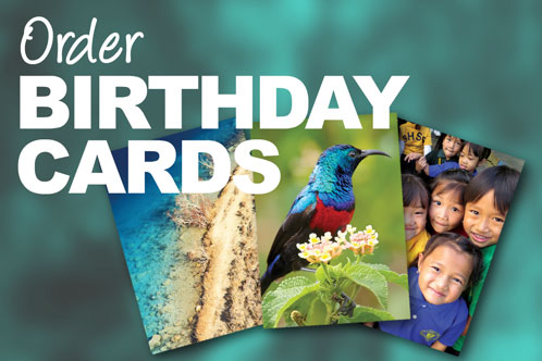 Images of birthday cards - order birthday cards link