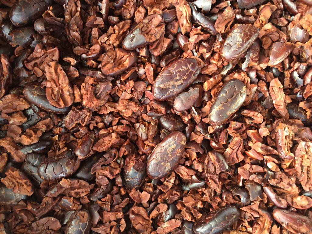 Roasted cacao beans.
